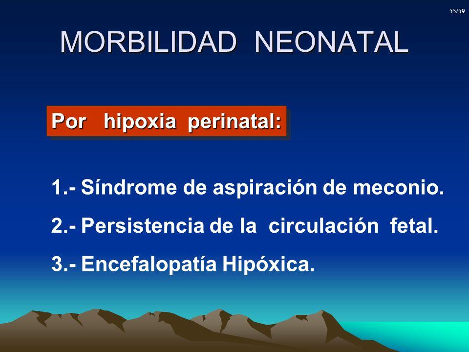 MORBILIDAD NEONATAL 1.- Síndrome de aspiración de meconio. 2.- Persistencia de la circulación fetal. 3.- Encefalopatía Hipóxica. Por hipoxia perinatal