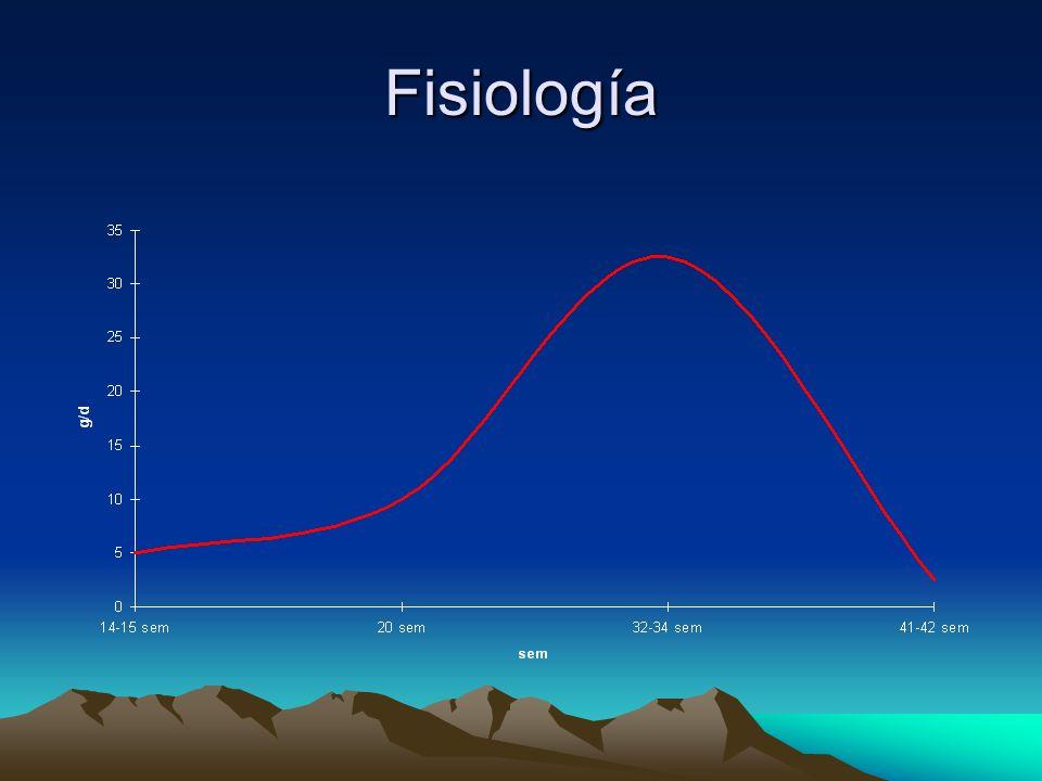 Diagnóstico –Biometría completa DBP, CC, CA, LF, DC –Morfología –Estimación de peso fetal –Estimación de simetría Indice CC/CA (Campbell) Indice LF/CA (Hadlock) II.- Ultrasonográfico