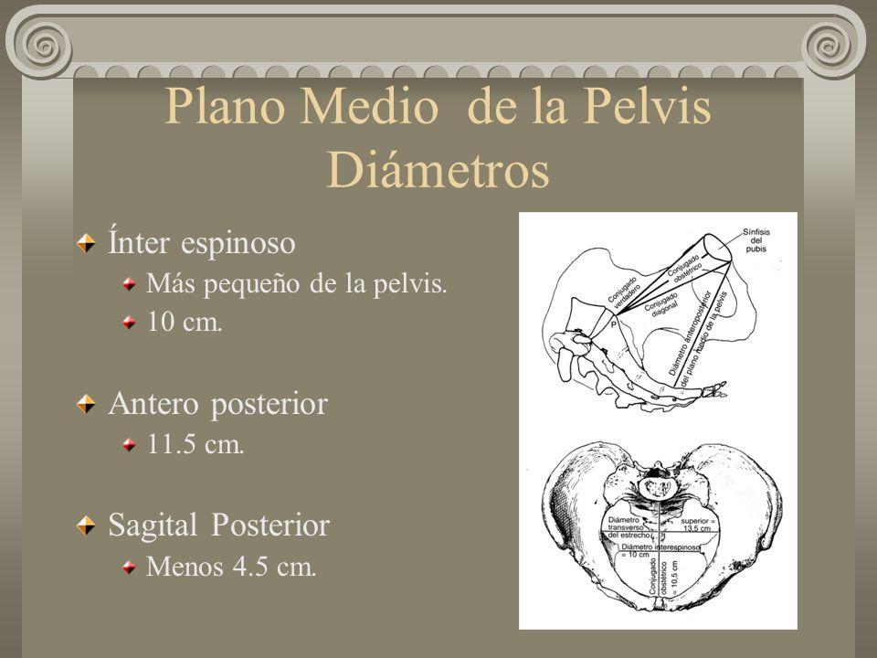 Plano Medio de la Pelvis Diámetros Ínter espinoso Más pequeño de la pelvis. 10 cm. Antero posterior 11.5 cm. Sagital Posterior Menos 4.5 cm.