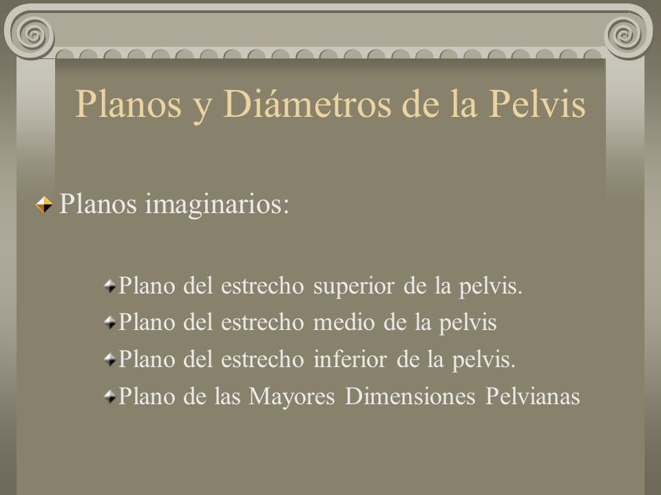 Planos y Diámetros de la Pelvis Planos imaginarios: Plano del estrecho superior de la pelvis. Plano del estrecho medio de la pelvis Plano del estrecho