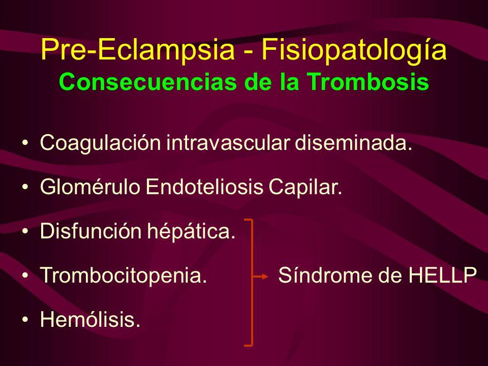 Pre-Eclampsia - Fisiopatología Consecuencias de la Trombosis Coagulación intravascular diseminada. Glomérulo Endoteliosis Capilar. Disfunción hépática