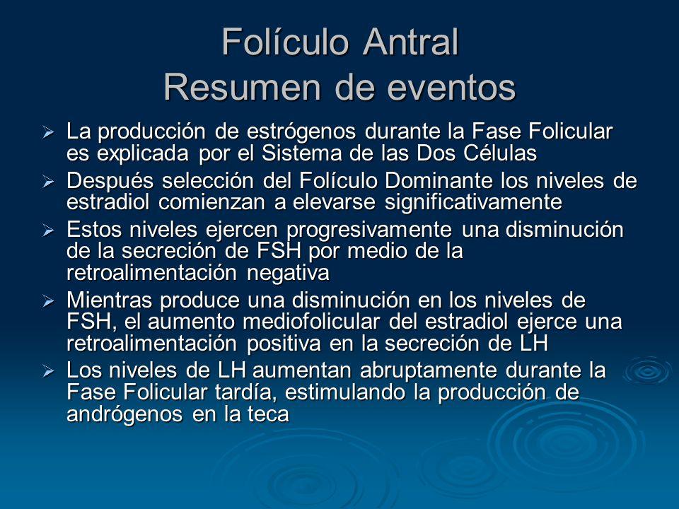 Folículo Antral Resumen de eventos La producción de estrógenos durante la Fase Folicular es explicada por el Sistema de las Dos Células La producción