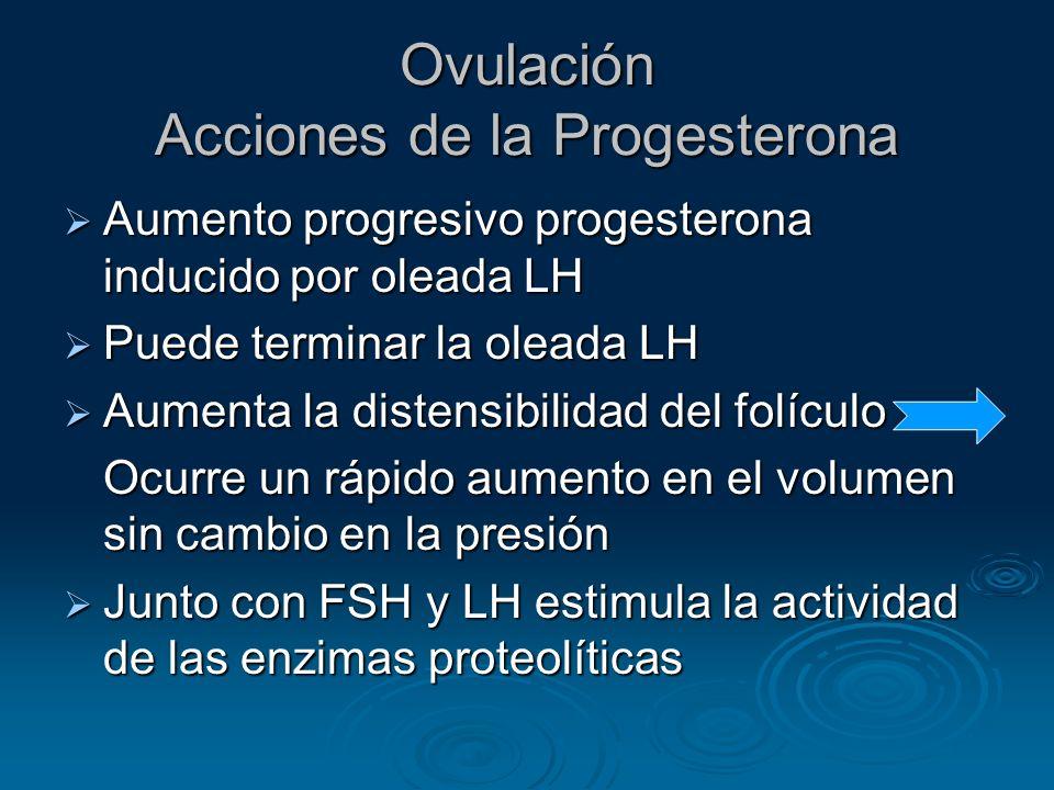 Ovulación Acciones de la Progesterona Aumento progresivo progesterona inducido por oleada LH Aumento progresivo progesterona inducido por oleada LH Pu