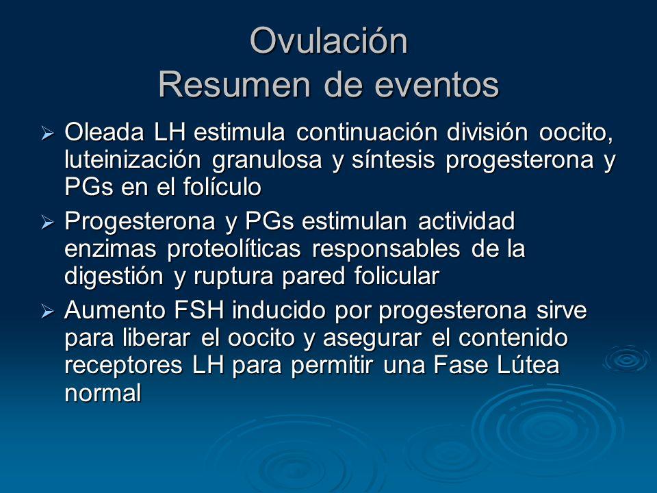 Ovulación Resumen de eventos Oleada LH estimula continuación división oocito, luteinización granulosa y síntesis progesterona y PGs en el folículo Ole