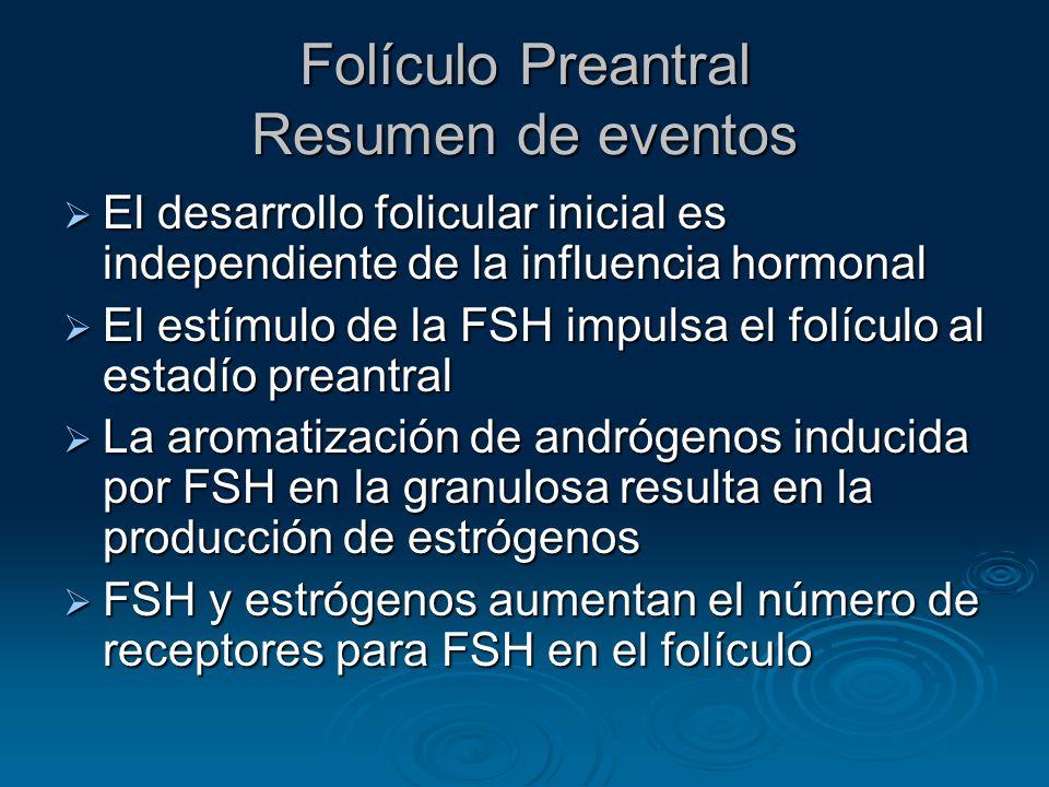 Folículo Preantral Resumen de eventos El desarrollo folicular inicial es independiente de la influencia hormonal El desarrollo folicular inicial es in