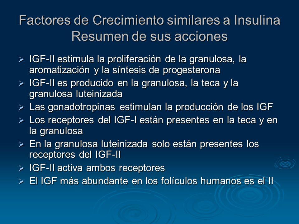 Factores de Crecimiento similares a Insulina Resumen de sus acciones IGF-II estimula la proliferación de la granulosa, la aromatización y la síntesis