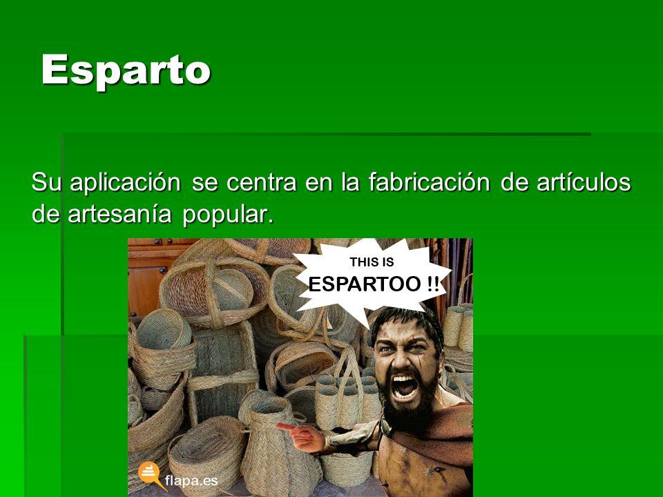 Esparto Su aplicación se centra en la fabricación de artículos de artesanía popular. Su aplicación se centra en la fabricación de artículos de artesan