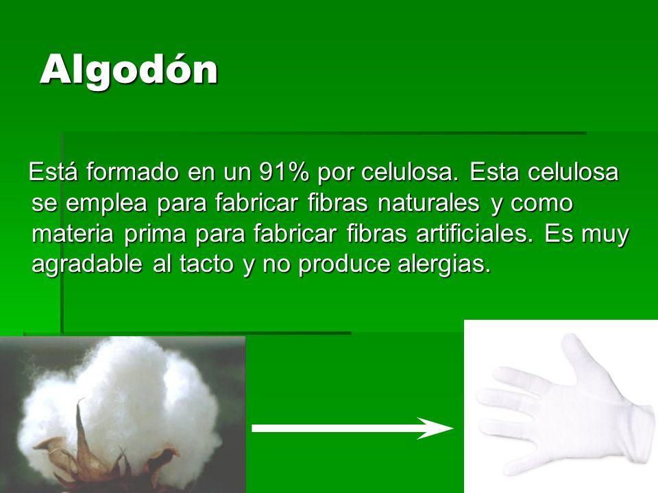 Lino Es mas resistente que el algodón, pero menos elástica y flexible.