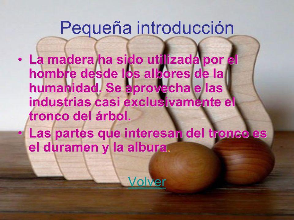 Pequeña introducción La madera ha sido utilizada por el hombre desde los albores de la humanidad. Se aprovecha e las industrias casi exclusivamente el