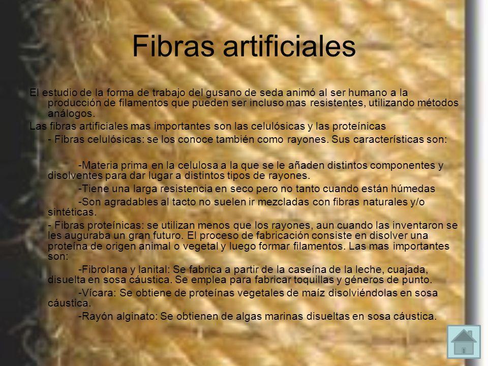 Fibras artificiales El estudio de la forma de trabajo del gusano de seda animó al ser humano a la producción de filamentos que pueden ser incluso mas