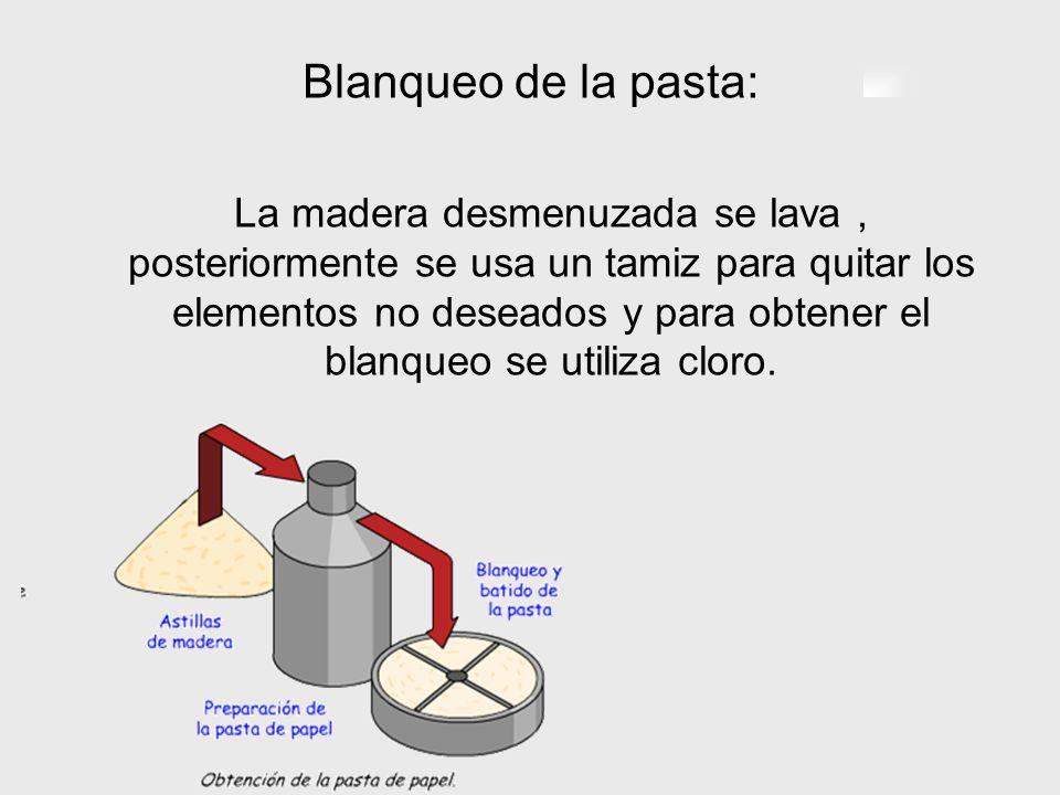 Blanqueo de la pasta: La madera desmenuzada se lava, posteriormente se usa un tamiz para quitar los elementos no deseados y para obtener el blanqueo s
