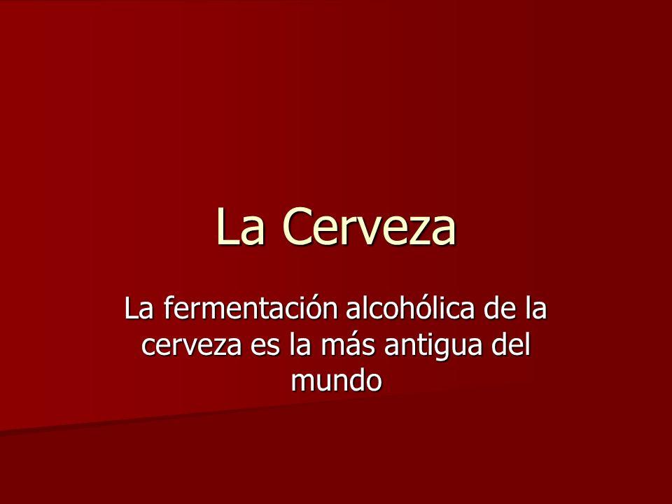CERVEZA Nombre de una bebida alcohólica elaborada por la fermentación de soluciones obtenidas de cereales y otros granos que contienen almidón.