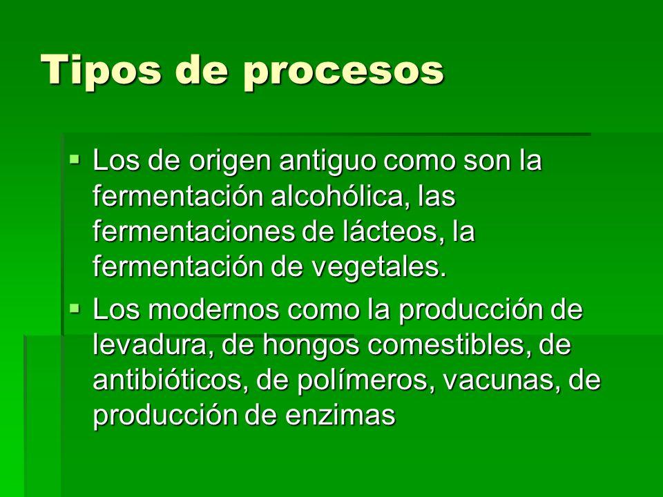 Tipos de procesos Los de origen antiguo como son la fermentación alcohólica, las fermentaciones de lácteos, la fermentación de vegetales. Los de orige
