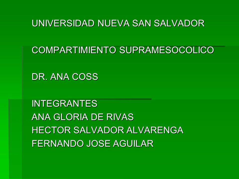 UNIVERSIDAD NUEVA SAN SALVADOR COMPARTIMIENTO SUPRAMESOCOLICO DR. ANA COSS INTEGRANTES ANA GLORIA DE RIVAS HECTOR SALVADOR ALVARENGA FERNANDO JOSE AGU