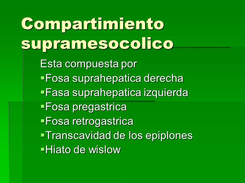 Compartimiento supramesocolico Esta compuesta por Fosa suprahepatica derecha Fosa suprahepatica derecha Fasa suprahepatica izquierda Fasa suprahepatic