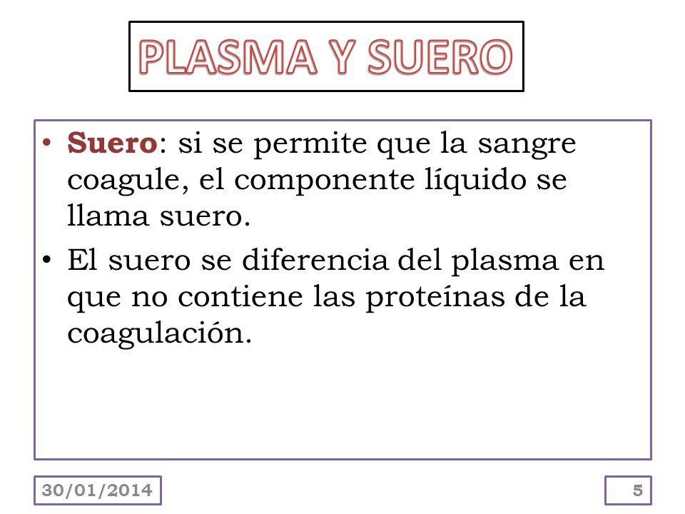 Suero: si se permite que la sangre coagule, el componente líquido se llama suero. El suero se diferencia del plasma en que no contiene las proteínas d