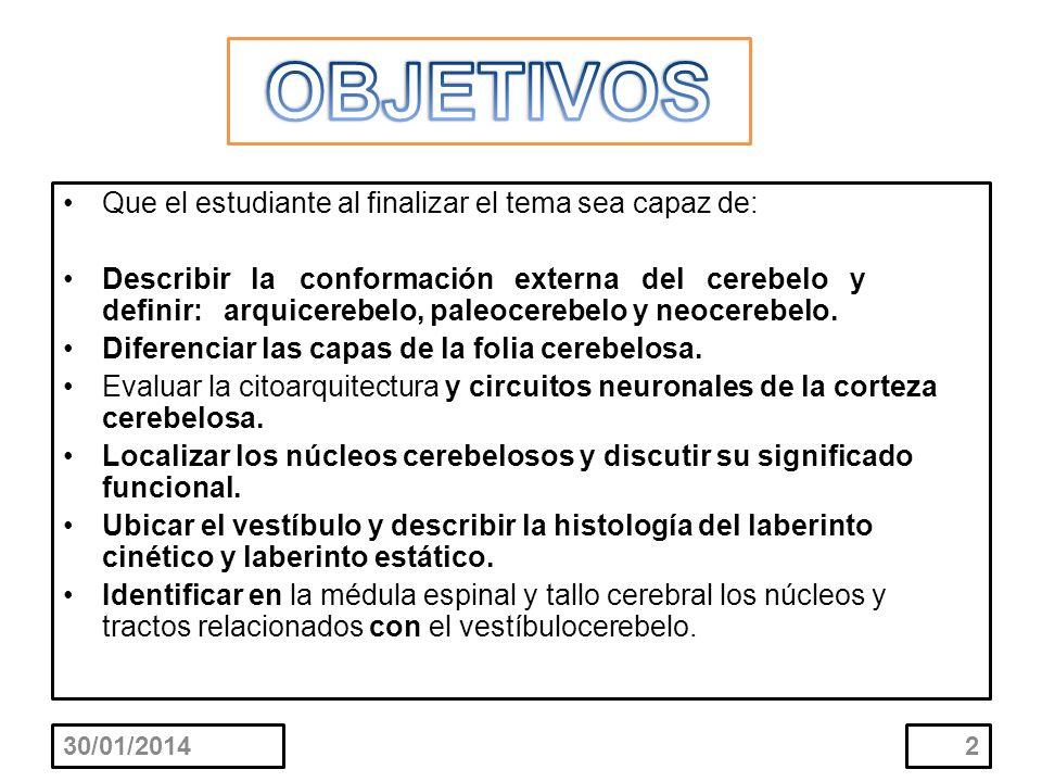 Que el estudiante al finalizar el tema sea capaz de: Describir la conformación externa del cerebelo y definir: arquicerebelo, paleocerebelo y neocereb
