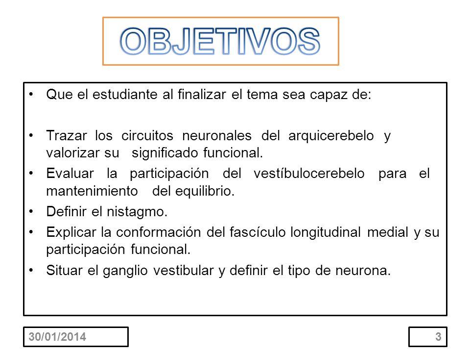Que el estudiante al finalizar el tema sea capaz de: Trazar los circuitos neuronales del arquicerebelo y valorizar su significado funcional. Evaluar l