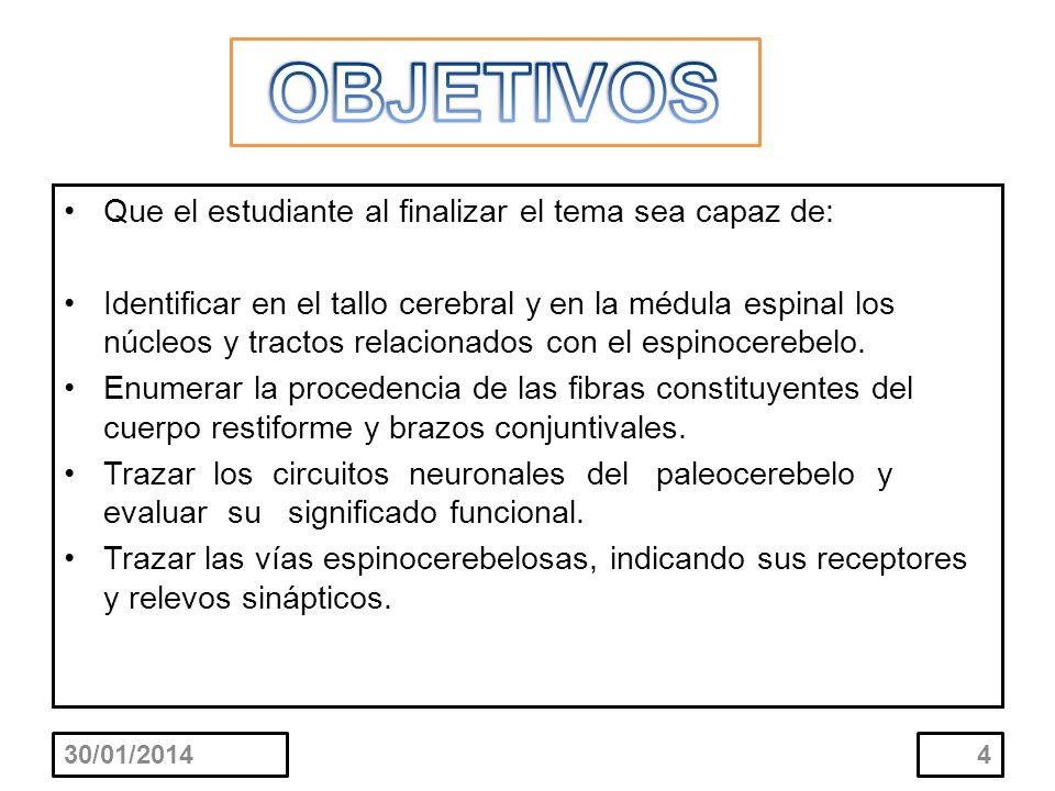 Que el estudiante al finalizar el tema sea capaz de: Identificar en el tallo cerebral y en la médula espinal los núcleos y tractos relacionados con el