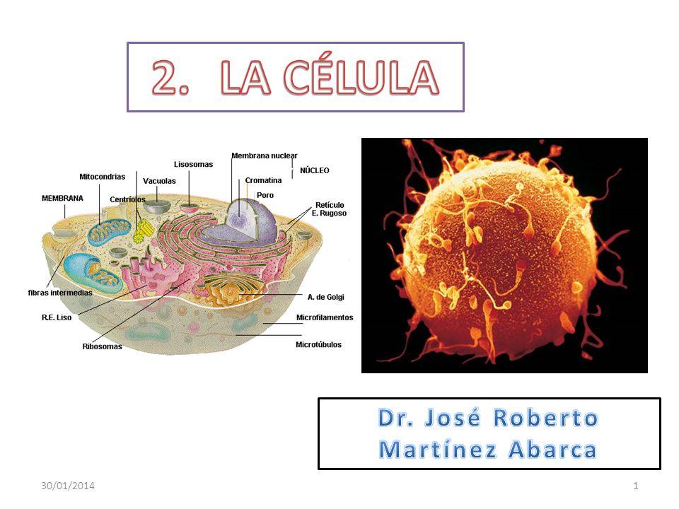 Que el estudiante: Enuncie el concepto de célula.Describa las partes principales de la célula.