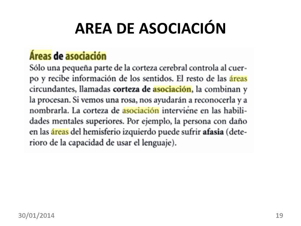 AREA DE ASOCIACIÓN 30/01/201419