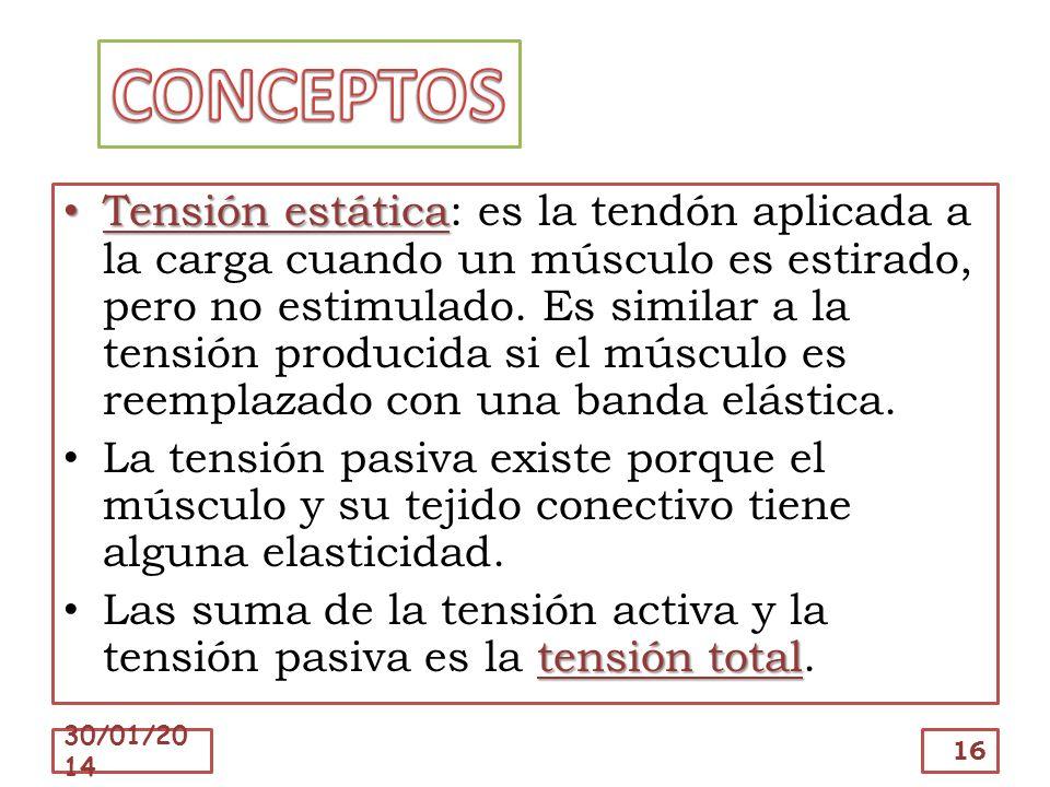 Tensión estática Tensión estática: es la tendón aplicada a la carga cuando un músculo es estirado, pero no estimulado. Es similar a la tensión produci