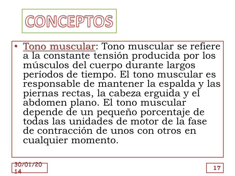 Tono muscular Tono muscular: Tono muscular se refiere a la constante tensión producida por los músculos del cuerpo durante largos períodos de tiempo.