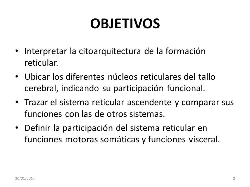 OBJETIVOS Interpretar la citoarquitectura de la formación reticular. Ubicar los diferentes núcleos reticulares del tallo cerebral, indicando su partic