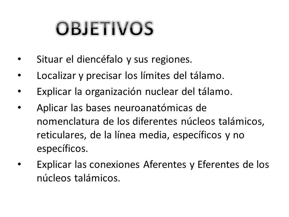 Situar el diencéfalo y sus regiones.Localizar y precisar los límites del tálamo.