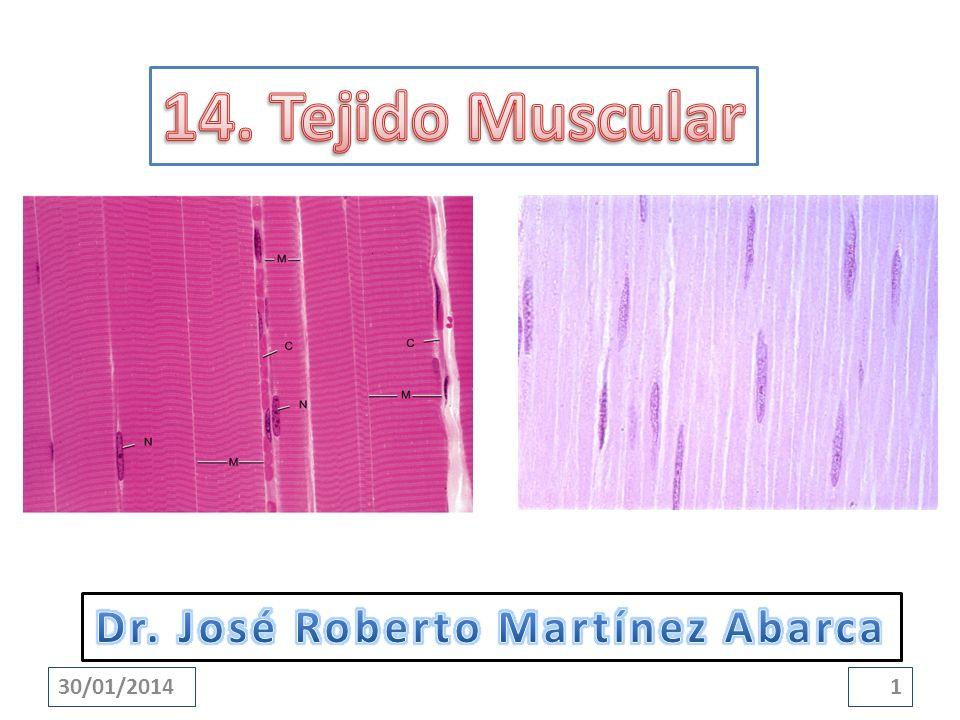 Que el estudiante: Enumere los tres tipos de músculos.