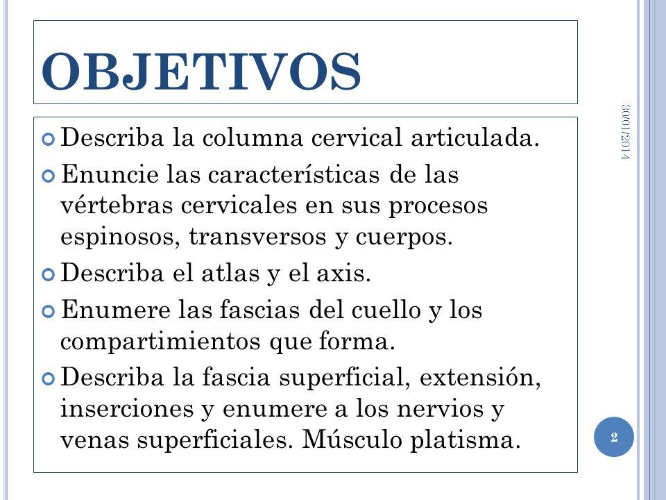 OBJETIVOS Describa la columna cervical articulada. Enuncie las características de las vértebras cervicales en sus procesos espinosos, transversos y cu
