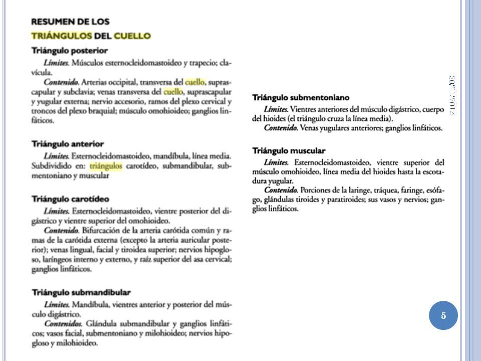 M. ECM 30/01/2014 16