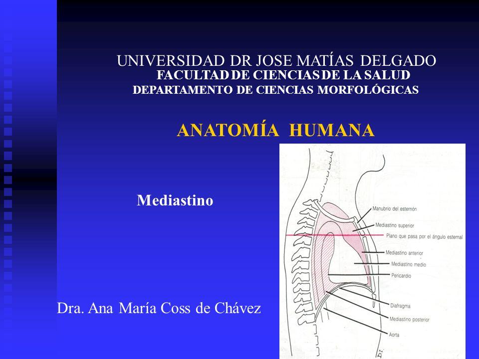 UNIVERSIDAD DR JOSE MATÍAS DELGADO FACULTAD DE CIENCIAS DE LA SALUD DEPARTAMENTO DE CIENCIAS MORFOLÓGICAS ANATOMÍA HUMANA Dra. Ana María Coss de Cháve