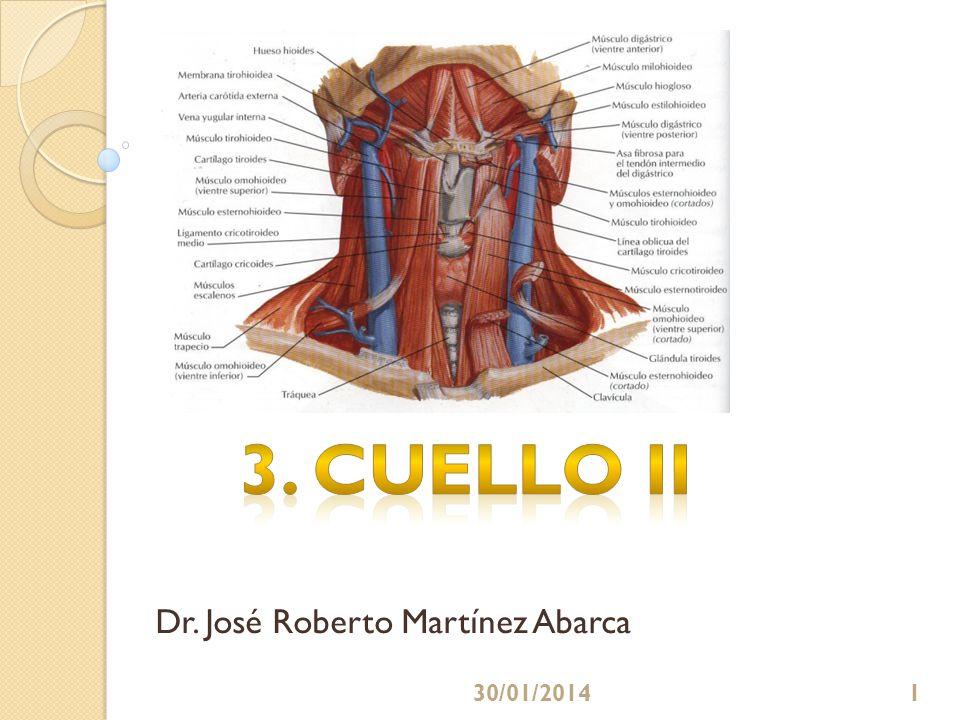 CONTENIDOS En la clase: Que el estudiante: Describa el origen, trayecto y relaciones de la arteria subclavia.