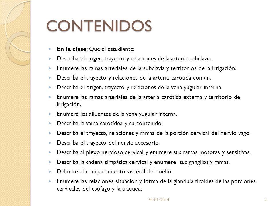 NERVIO VAGO Y ACCESORIO 30/01/201413