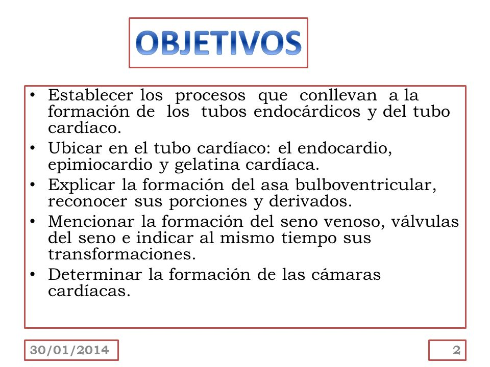 Sumarizar el mecanismo de formación de los canales atrioventriculares.