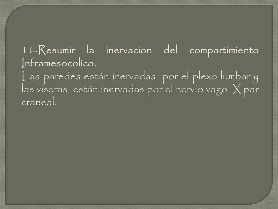 11-Resumir la inervacion del compartimiento Inframesocolico. Las paredes están inervadas por el plexo lumbar y las viseras están inervadas por el nerv