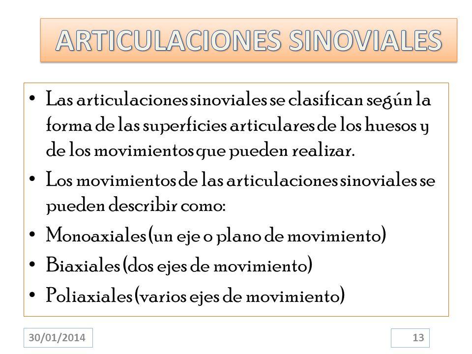 Las articulaciones sinoviales se clasifican según la forma de las superficies articulares de los huesos y de los movimientos que pueden realizar. Los