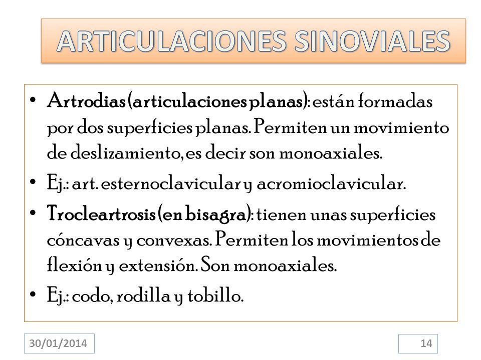 Artrodias (articulaciones planas): están formadas por dos superficies planas. Permiten un movimiento de deslizamiento, es decir son monoaxiales. Ej.: