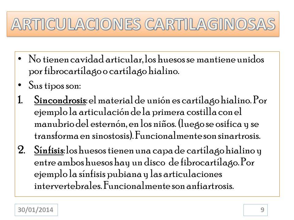 No tienen cavidad articular, los huesos se mantiene unidos por fibrocartílago o cartílago hialino. Sus tipos son: 1.Sincondrosis: el material de unión