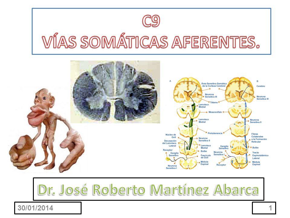 Que el estudiante al finalizar el tema sea capaz de: Señalar las distribuciones de las fibras de las raíces dorsales al ingresar a la médula espinal, mencionando los fascículos septo marginal e interfascicular.