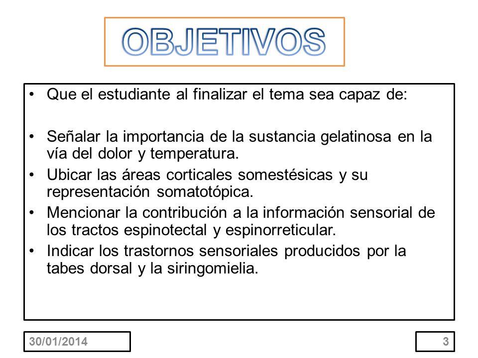 Que el estudiante al finalizar el tema sea capaz de: Señalar la importancia de la sustancia gelatinosa en la vía del dolor y temperatura. Ubicar las á