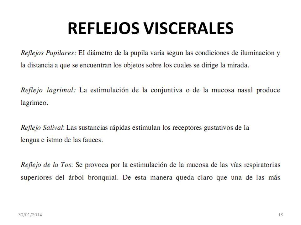 REFLEJOS VISCERALES 30/01/201413