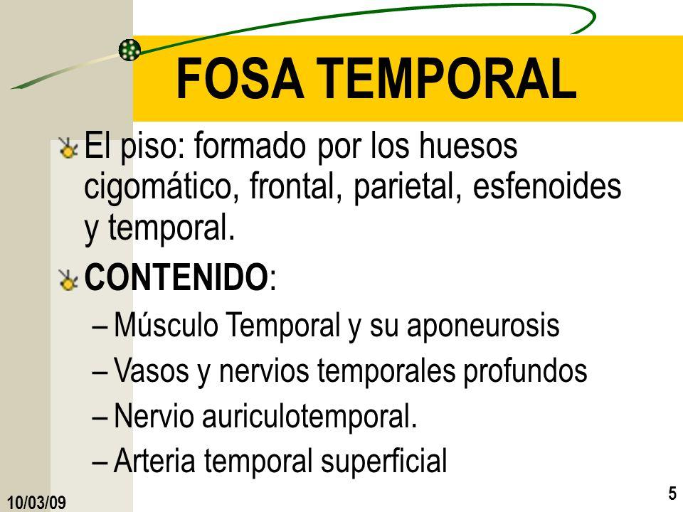 10/03/09 5 FOSA TEMPORAL El piso: formado por los huesos cigomático, frontal, parietal, esfenoides y temporal. CONTENIDO : –Músculo Temporal y su apon