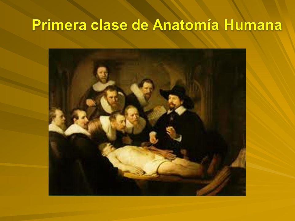 1.Definir las diferentes posiciones anatómicas.