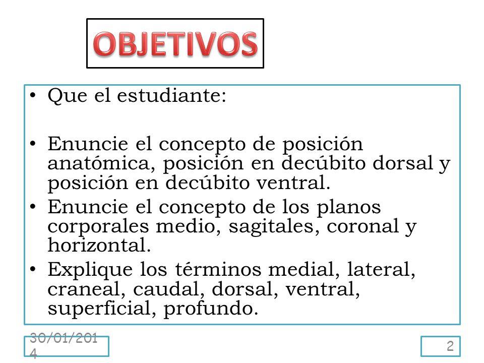 Que el estudiante: Enuncie el concepto de posición anatómica, posición en decúbito dorsal y posición en decúbito ventral. Enuncie el concepto de los p