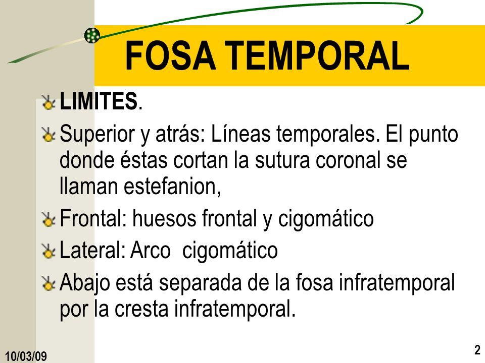 2 FOSA TEMPORAL LIMITES. Superior y atrás: Líneas temporales. El punto donde éstas cortan la sutura coronal se llaman estefanion, Frontal: huesos fron