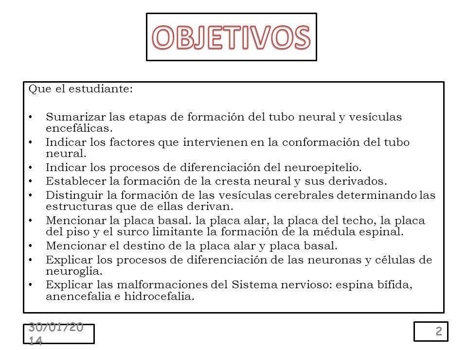 Que el estudiante: Sumarizar las etapas de formación del tubo neural y vesículas encefálicas.