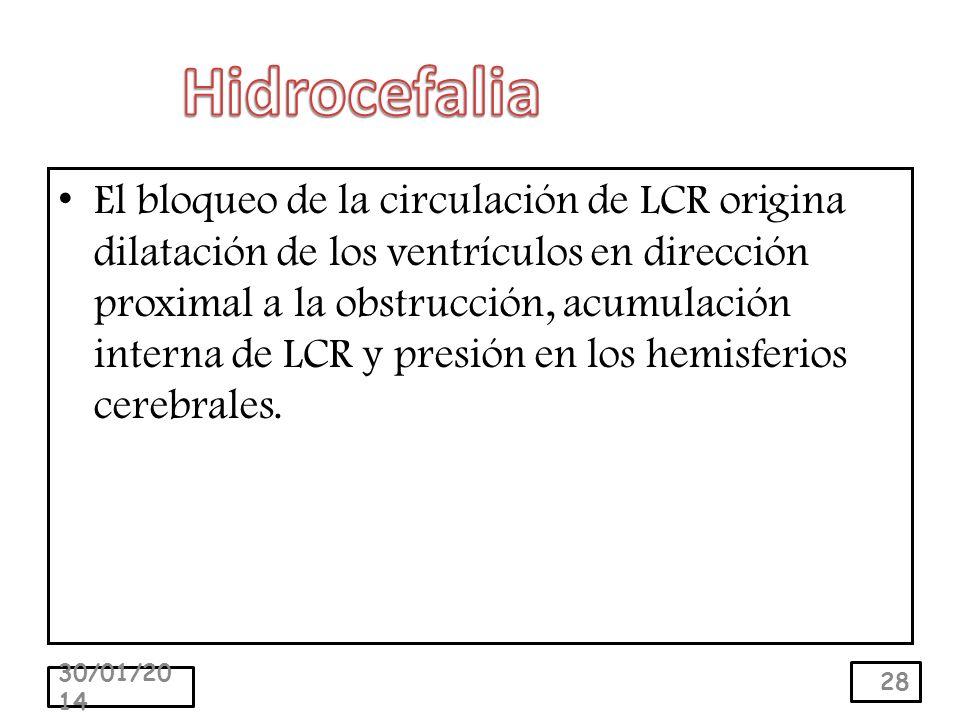 El bloqueo de la circulación de LCR origina dilatación de los ventrículos en dirección proximal a la obstrucción, acumulación interna de LCR y presión en los hemisferios cerebrales.