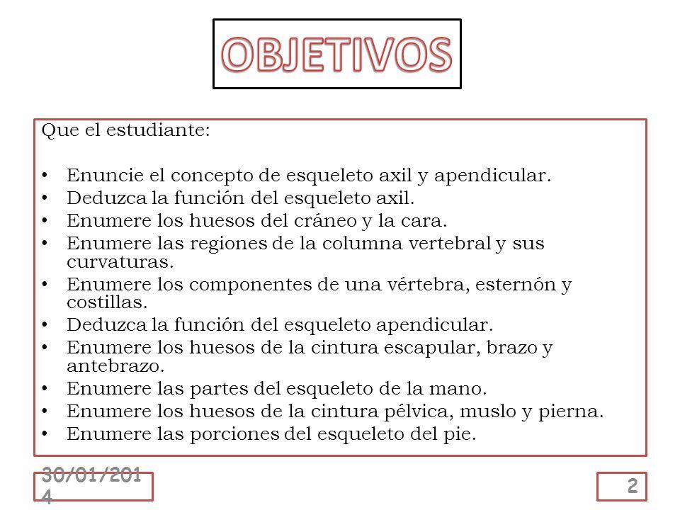 Que el estudiante: Enuncie el concepto de esqueleto axil y apendicular. Deduzca la función del esqueleto axil. Enumere los huesos del cráneo y la cara